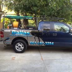 Dallas Pest1
