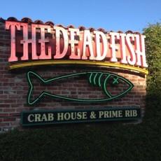 the dead fish2